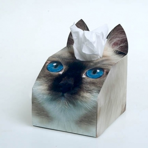 Paws 4 Africa Cat tissue box | Meister Trading | The Cat Product Specialist