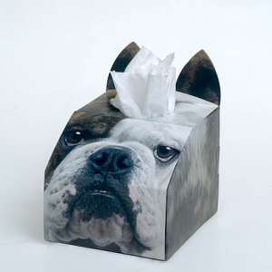 Paws 4 Africa Dog tissue box | Meister Trading | The Cat Product Specialist