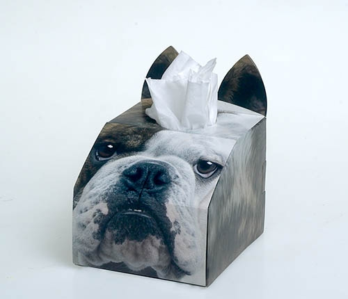 Paws 4 Africa Dog tissue box   Meister Trading   The Cat Product Specialist
