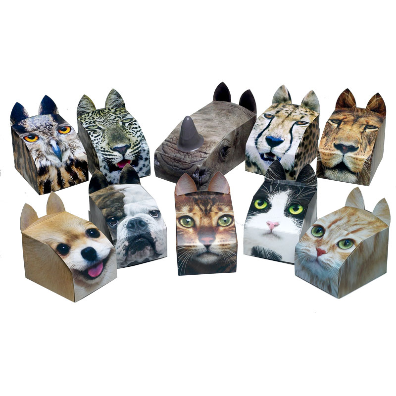 Paws 4 Africa Tissue box Range | Meister Trading | The Cat Product Specialist